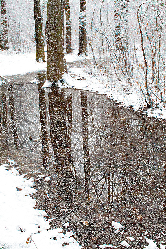 Forest and Water after Fresh Snowfall - Colored Pencil effect