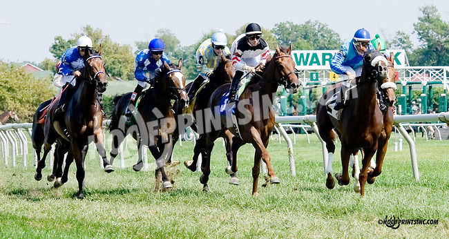 Chiffonade winning at Delaware Park on 9/4/14