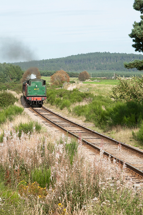Steam locomotive on the Strathspey steam railway near Aviemore, Cairngorm National Park, Scotland, Uk