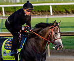 LOUISVILLE, KENTUCKY - APRIL 29: Roadster, trained by Bob Baffert, exercises in preparation for the Kentucky Derby at Churchill Downs in Louisville, Kentucky on April 29, 2019. Scott Serio/Eclipse Sportswire/CSM
