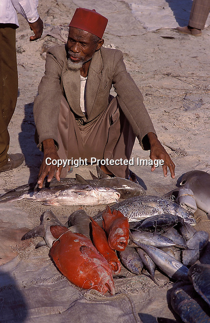 COTANZA35060.Country. Tanzania. Dar es Salaam. Elderley man wearing a fez, sitting in front of fish (the catch) at fishmarket. Red fish. Muslim, vendor, market..©Per-Anders Pettersson/iAfrika Photos