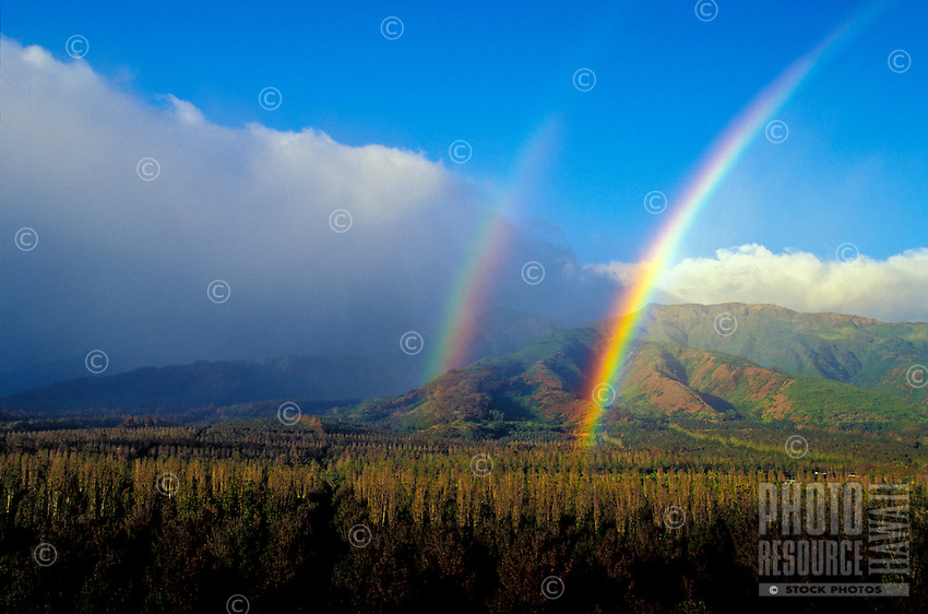 A double rainbow reaches the macadamia trees growing at Waiehu, Maui.