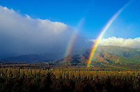 A double rainbow reaches the macadamia trees growing at Waiehu, Maui.