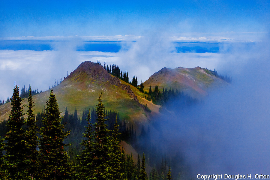 View north over the Strait of Juan de Fuca, with Sequim, WA hidden under fog, from Deer Park in Olympic Mountain National Park, on the Olympic Penninsula, Washington State, near Hurricane Ridge.  Vancouver Island, Canada peaks above the fog bank. Olympic Peninsula