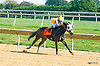 Seventyseven Ilene winning at Delaware Park on 10/7/15