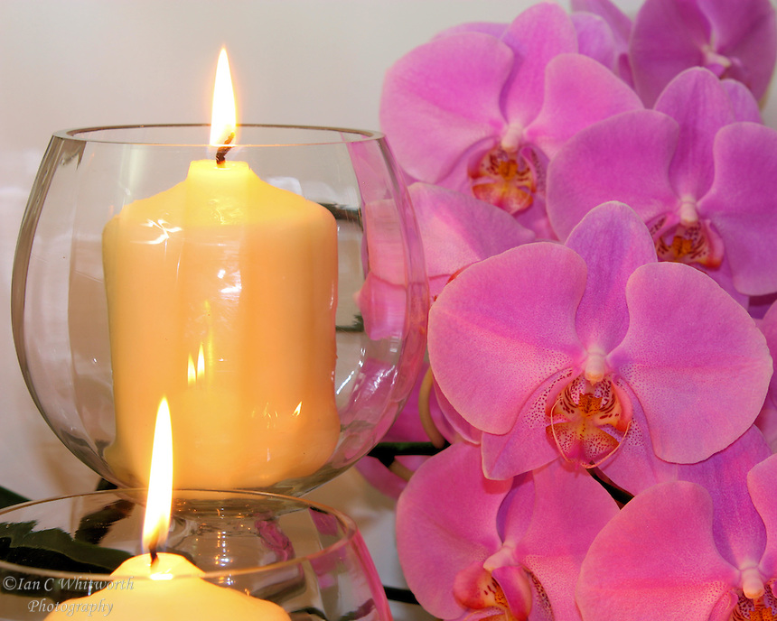 Candles burning in glass holders light up Beautiful orchids