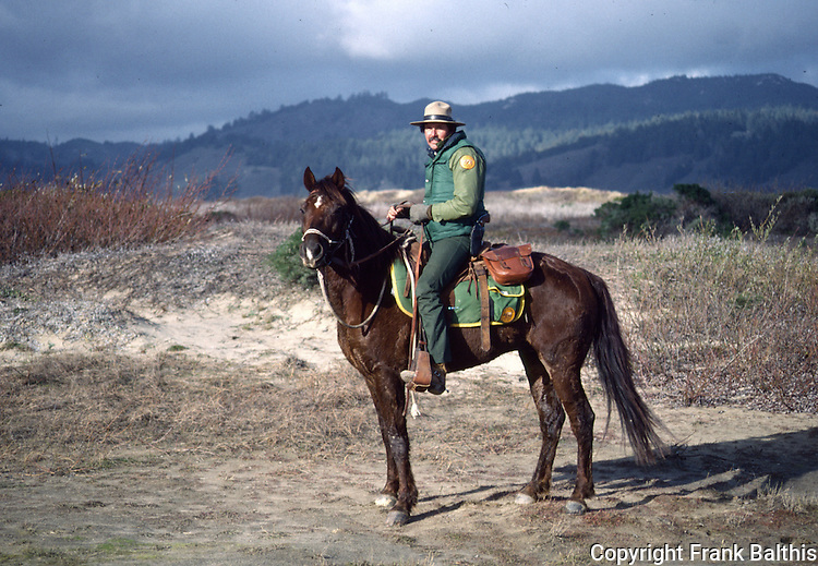 California State Park Ranger on horse at Ano Nuevo State Park