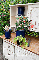63821-20409 Potting bench with containers and flowers in spring, Marion Co. IL