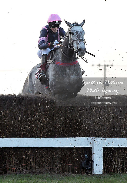 Topthorn ridden by Mr Z Baker. Race 6. ladbrokes.com Maiden Hunters¥ Chase. Kent National Day. Folkestone Racecourse. Folkestone. Kent. 29/02/2012. MANDATORY Credit Garry Bowden/Sportinpictures - NO UNAUTHORISED USE - 07837 394578