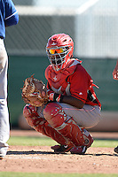 Cincinnati Reds catcher Shedric Long (30) during an Instructional League game against the Texas Rangers on October 3, 2014 at Surprise Stadium Training Complex in Surprise, Arizona.  (Mike Janes/Four Seam Images)