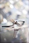 Forks at the restaurant Root Down in Denver.   Photo by Ellen Jaskol.   ..