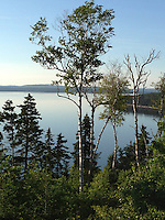 Wadsworth Cove from the Lookout, Witherle Woods, Castine, Maine, US