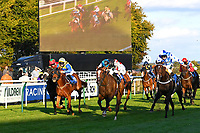 Winner of The Signs In Motion Ltd Handicap Stakes     Silver Swift (blue\black cap) ridden by Jason Watson and trained by Andrew Balding  during Twilight Racing at Salisbury Racecourse on 14th September 2018