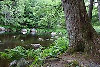Mersey River Kejimkujik National Park, Nova Scotia, Canada