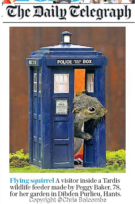 Chris' shot of this cute squirrel licking peanut butter from the door of a miniature Doctor Who Tardis made the Daily Telegraph, UK.<br />