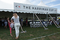 The 29th Annual Harriman Cup