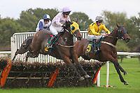 Horse Racing 2013-10