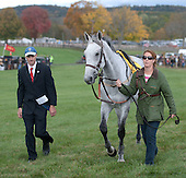 4th Grand National - Demonstrative