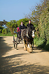 Horse and carriage, Island of Sark, Channel Islands, Great Britai