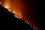 Forest fire, Alps, Italy