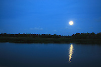 Full moon reflecting itself in the waters of Green Cay Wetlands, Boynton Beach, Florida.