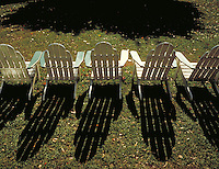 A row of five lawn chairs cast their long shadows across the leaves. Autumn. Fall. Furniture. Suburbia. Recreation. New Jersey.