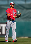 29 February 2020: Washington Nationals top prospect infielder Luis Garcia returns to the dugout during a Spring Training game against the St. Louis Cardinals at Roger Dean Stadium in Jupiter, Florida. The Cardinals defeated the Nationals 6-3 in Grapefruit League play. Mandatory Credit: Ed Wolfstein Photo *** RAW (NEF) Image File Available ***