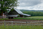 A summer morning at the Jenne Farm in Reading, VT, USA
