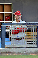 Palm Beach Cardinals manager Dann Bilardello (11) in the dugout during a game against the Charlotte Stone Crabs on April 12, 2014 at Charlotte Sports Park in Port Charlotte, Florida.  Palm Beach defeated Charlotte 6-2.  (Mike Janes/Four Seam Images)