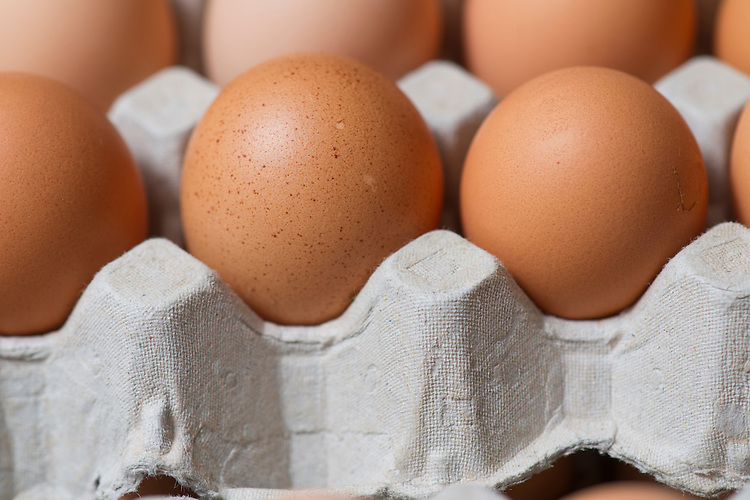 IP Rohde & Co and Rohde's Free Range Eggs - John Rohde – 8528 5383