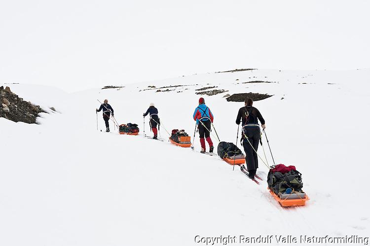Skiløpere med pulk på vei opp på Borebreen. ---- Skiers with sleds on the way onto Borebreen.