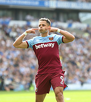 West Ham United's Javier Hernandez celebrates scoring his side's first goal <br /> <br /> Photographer Rob Newell/CameraSport<br /> <br /> The Premier League - Brighton and Hove Albion v West Ham United - Saturday 17th August 2019 - The Amex Stadium - Brighton<br /> <br /> World Copyright © 2019 CameraSport. All rights reserved. 43 Linden Ave. Countesthorpe. Leicester. England. LE8 5PG - Tel: +44 (0) 116 277 4147 - admin@camerasport.com - www.camerasport.com