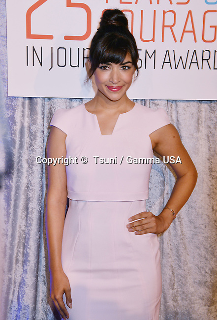Hannah Simone   at the Courage in Journalism Awards 2014 at the Beverly Hilton in Los Angeles