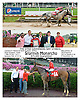 Stormin Monarcho winning The DTHA Governors Day Stakes on Owners Day at Delaware Park on 9/13/14