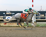 Parx Racing Win Photos_12-2014