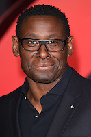 "David Harewood<br /> at the ""Batman vs Superman: Dawn of Justice"" premiere, Odeon Leicester Square, London<br /> <br /> <br /> ©Ash Knotek  D3101 22/03/2016"