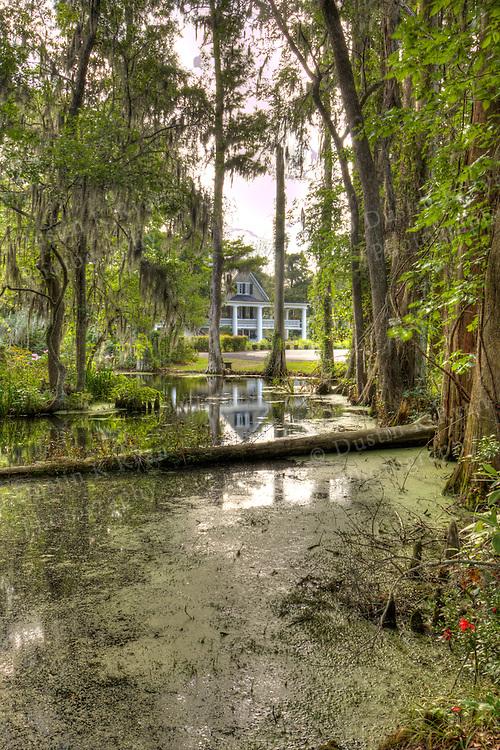 Magnolia Plantation Gardens and Cypress Swamp Charleston South Carolina