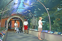 Ethnic mix people touring Audubon Aquarium of the Americas New Orleans Louisiana