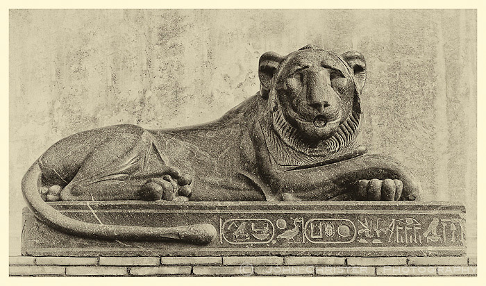 I really liked this stately Egyptian Cat in the Vatican Garden.  I converted the photo using a fine art technique.