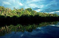 Alto rio Xié, fronteira do Brasil com a Colômbia a cerca de 1.000Km oeste de Manaus.<br />06/2002.<br />©Foto: Paulo Santos/Interfoto<br />Negativo Cor 135 Nº 8333 T3 F23 Expedição Werekena do Xié<br /> <br /> Os índios Baré e Werekena (ou Warekena) vivem principalmente ao longo do Rio Xié e alto curso do Rio Negro, para onde grande parte deles migrou compulsoriamente em razão do contato com os não-índios, cuja história foi marcada pela violência e a exploração do trabalho extrativista. Oriundos da família lingüística aruak, hoje falam uma língua franca, o nheengatu, difundida pelos carmelitas no período colonial. Integram a área cultural conhecida como Noroeste Amazônico. (ISA)