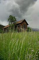 Cow shelter, Imst district, Tyrol/Tirol, Austria, Alps.