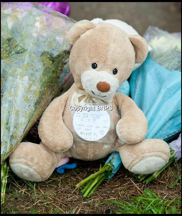 BNPS.co.uk (012902 558833)<br /> Pic: TomWren/BNPS<br /> <br /> Flowers and cuddly toys left at the home in Emmadale Close.<br /> <br /> Two companies responsible for an appalling catalogue of failures that led to the death of a five-year-old girl in her home have today been fined more than £1.5m.<br /> <br /> Alexys Brown died of severe head injuries after getting it trapped in a broken door panel of a disability lift that was for her wheelchair-bound  brother Jack.<br /> <br /> As the lift ascended her head crushed against the ceiling in her home in Weymouth, Dorset, in August 2015.<br /> <br /> Landlord Synergy Housing and lift maintenance form Orona Ltd admitted breaching health and safety laws and were fined at Bournemouth Crown Court.