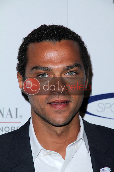 Jesse Williams<br />