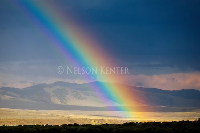 A brilliant rainbow meets the ground in western Montana