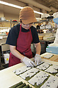 Sushi chef preparing cucumber roll