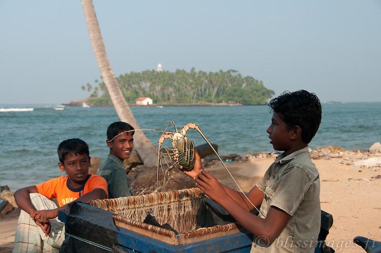 Sri Lankan boy proffers a big lobster for his friends at Beruwala fishing village, Sri Lanka