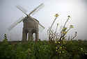 16/03/17<br /> <br /> With rapeseed flowers blooming in the foreground Chesterton Windmill emerges through the fog near Leamington Spa in Warwickshire. <br /> <br /> All Rights Reserved F Stop Press Ltd. (0)1773 550665 www.fstoppress.com
