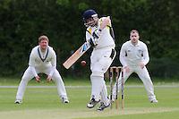 Cricket 2015-05