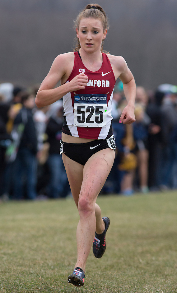 Stanford's Elise Cranny (525) runs during the NCAA Cross Country Championships in Terre Haute, Ind. on Saturday, Nov. 22, 2014. (James Brosher, Special to the Denver Post)