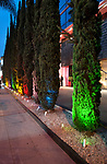Row of lit cypress trees at dusk in front of the Andaz Hotel on the Sunset Strip in Los Angeles, CA
